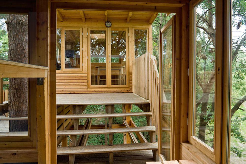 Scout Troop Constructs Splendid Almke Treehouse In Germany