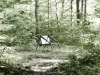 arachnide-chair-by-studioforma-2
