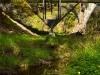 bridge-house-at-adelaide-3