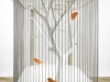 cage-archibird