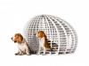 dogchitecture-project-5