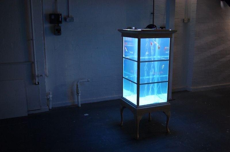 Fish Tank Cabinet - A 16th century cabinet converted into aquarium ...