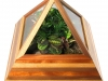 pyramid-terrarium-for-indoor-garding
