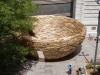 reading-nest
