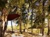 tree-snake-houses-2