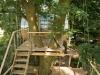 Baumraum Treehouse Djuren