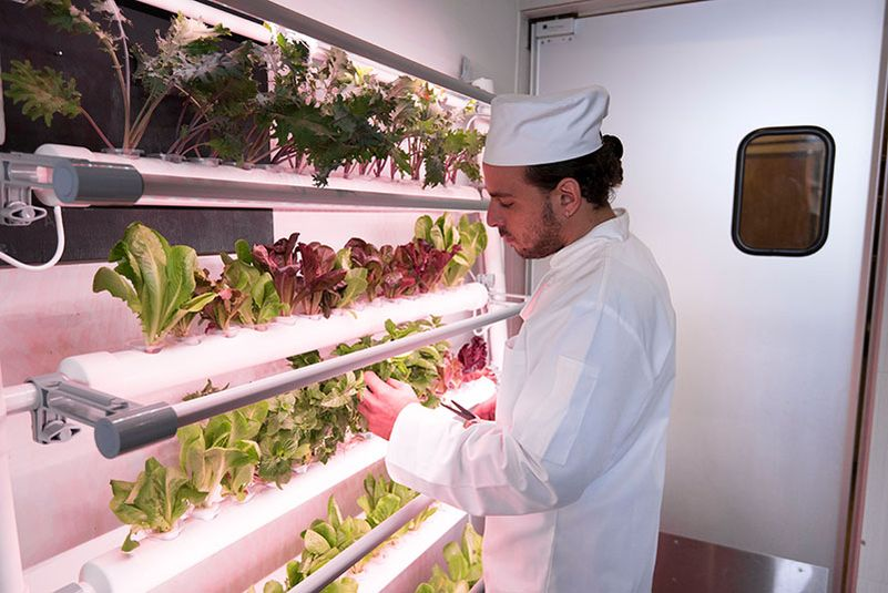 OPCOMLink USA's indoor hydroponic gardening systems at CES 2017