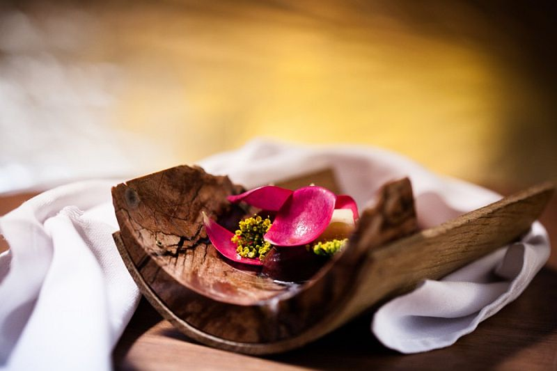 steinbeisser-experimental-at-gastronomy-food-art