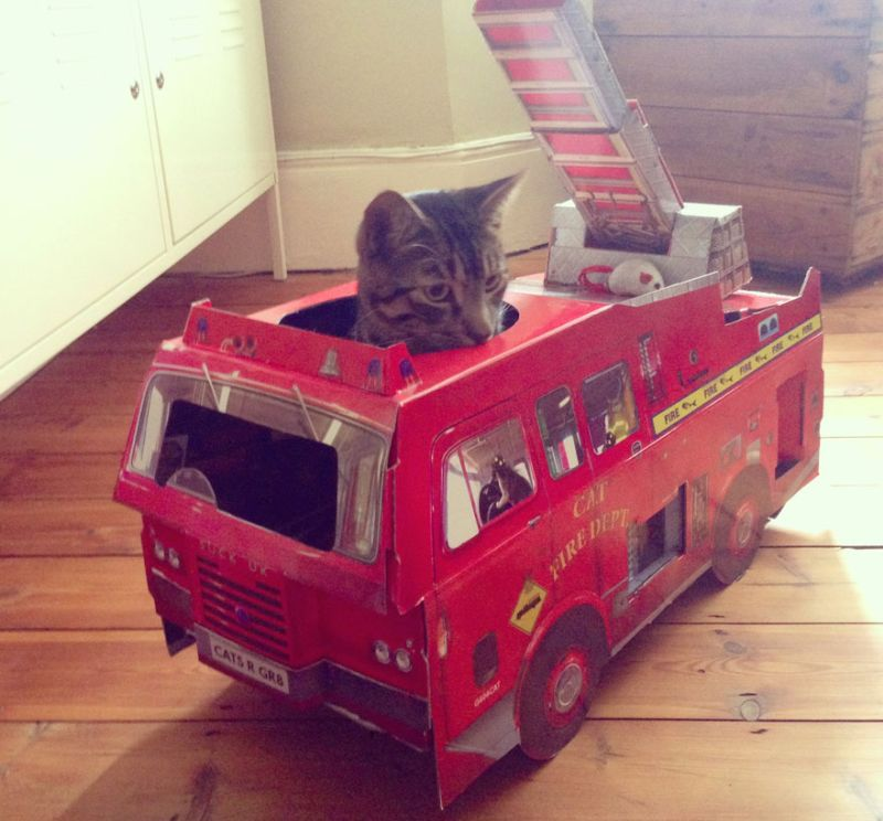fire engine cat playhouse