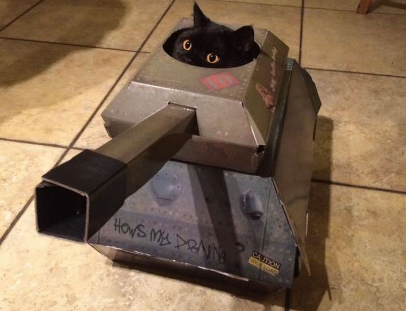 tank cat playhouse