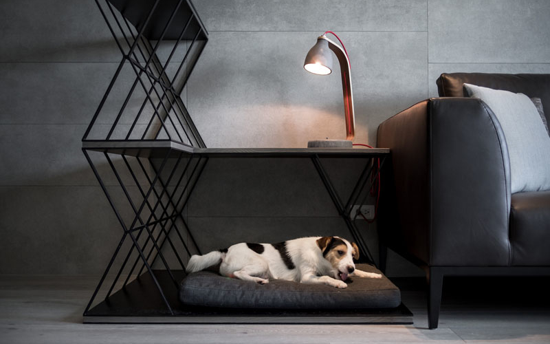 Triple-duty dog bed also serves as a side table and a room divider