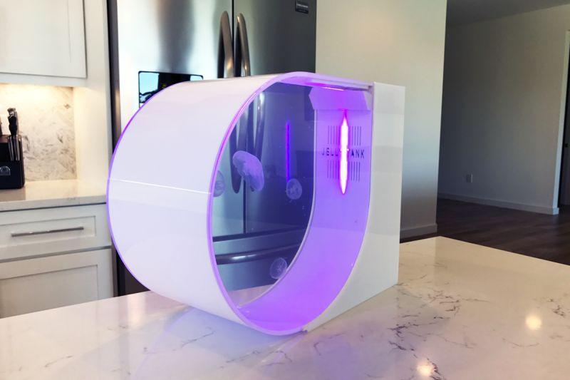Jellytank: An illuminating desktop aquarium by Blake & Brock Gratton