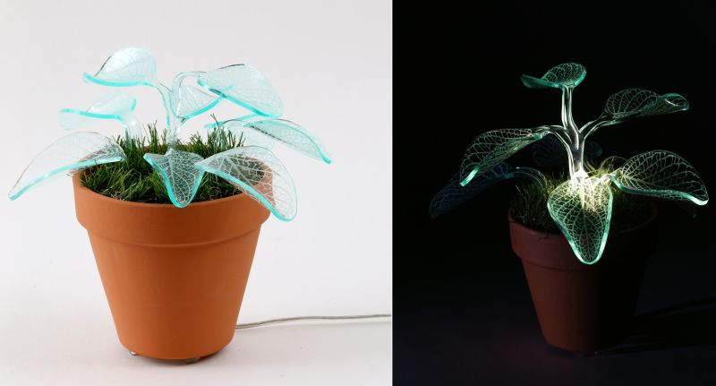 Plant lamps by Mariana Folberg use LED lights to glow in dark