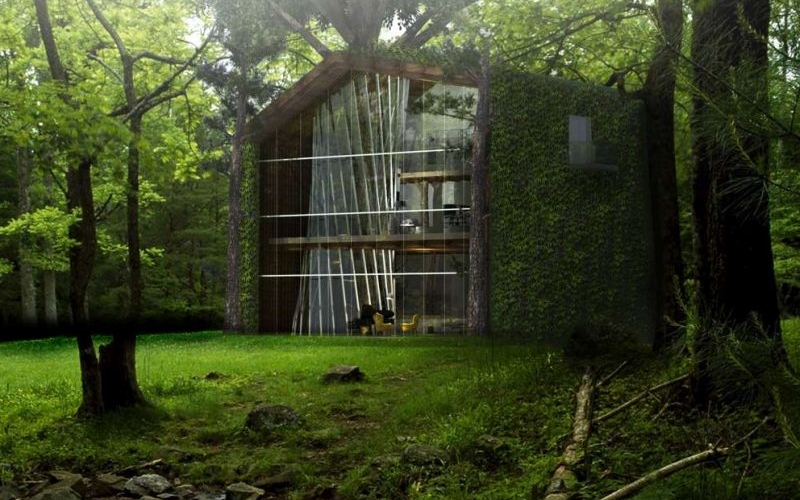 Sustainable treehouse design hints on the future of dwelling with nature