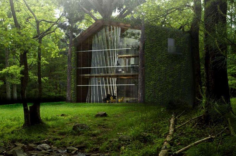 Anthony Leung sustainable treehouse design