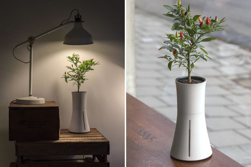 Botanium hydroponic pot saves you the hassle of watering plants for months