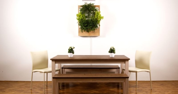 Herbert, a smart hydroponic wall garden grows food all year round