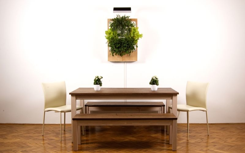 Herbert, a smart hydroponic wall garden for urban spaces