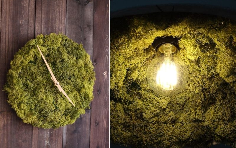 Chic wall clock and ceiling lamp recreate aesthetic of nature with moss
