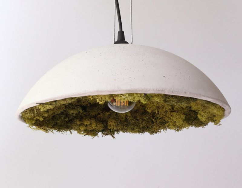 Stylish-Clock-and-Pendant-Covered-with-Icelandic-Moss