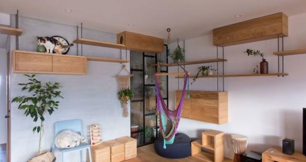 cat-friendly apartment in japan