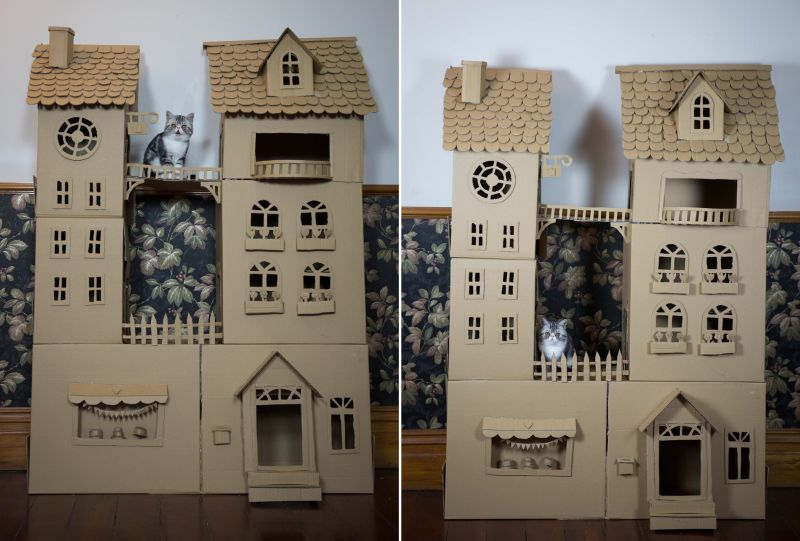 cardboard cat palace homecrux