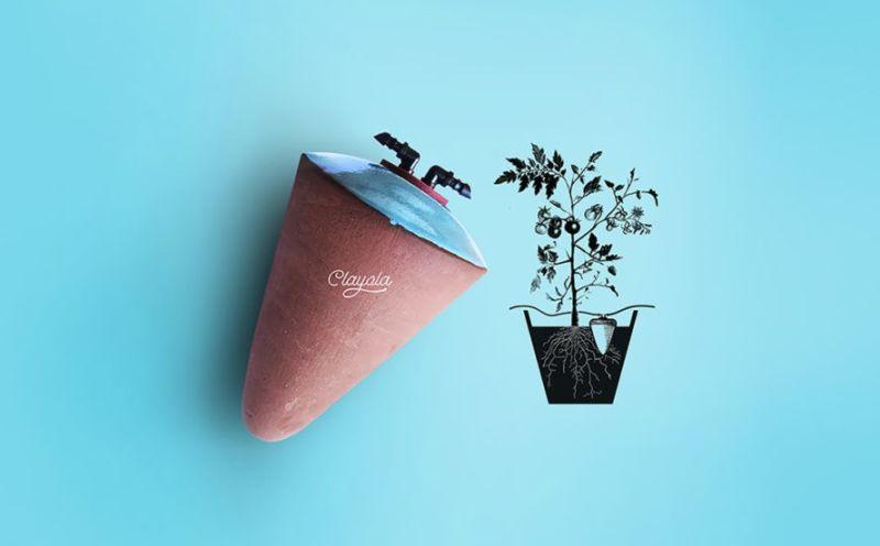 clayola-egypt-water-plants