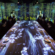Teamlab's digital installation at Sagaya offers multi-sensory eating experience