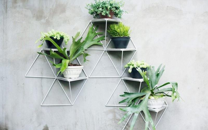 3D wall plant mounts by Luisa+Liliana Parrado help turn walls into garden