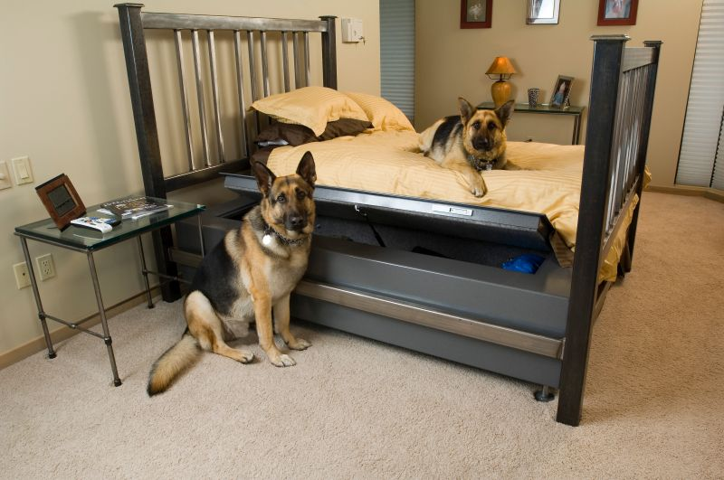 Weapon storage bed