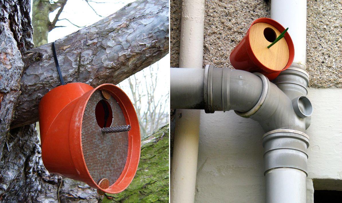 Birdhouse by Paul Clark
