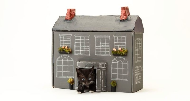 Georgian cat house by Clare Kelly for the Blue Cross Estate Agents