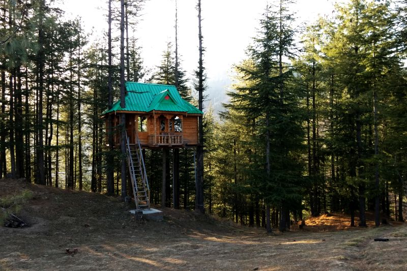 Himalayan Bliss Treehouse on top of deodar trees