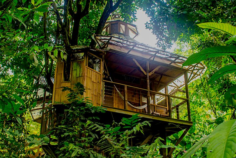 La Torreluna treehouse- Finca Bellavista