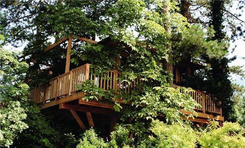 Meisters Irma treehotel – Italy
