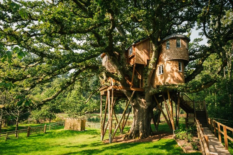 Multi-level Treehouse- Devon, UK