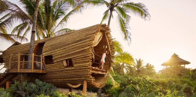 Playa Viva, Oceanfront treehouse – Mexico