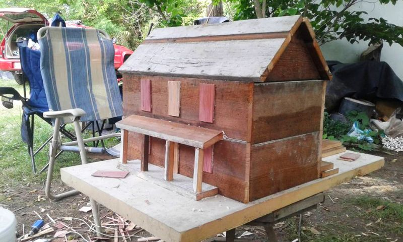 Roy's pine wood bird shed