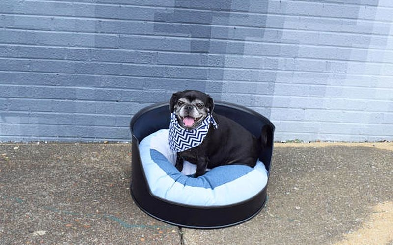 Clever Raven repurposes metal oil drum into an elegant dog bed
