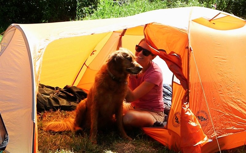World's most dog-friendly tent has separate mudroom for your pooch