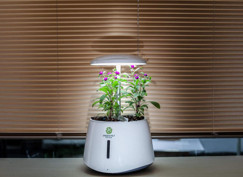 Zhejiang Nashou's smart garden purifies indoor air