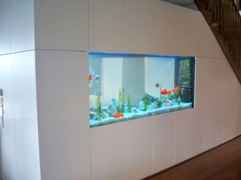 beautiful fish aquarium under stairs