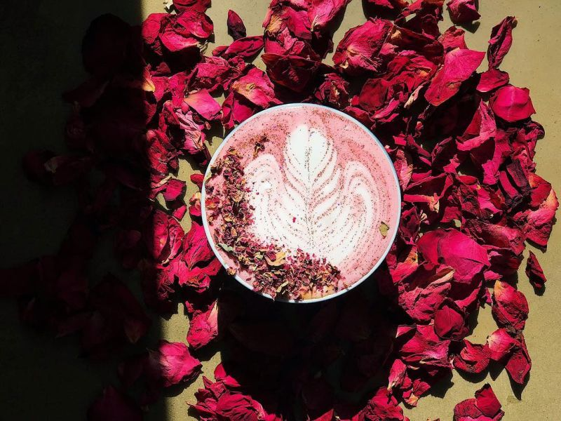 red rose lattes