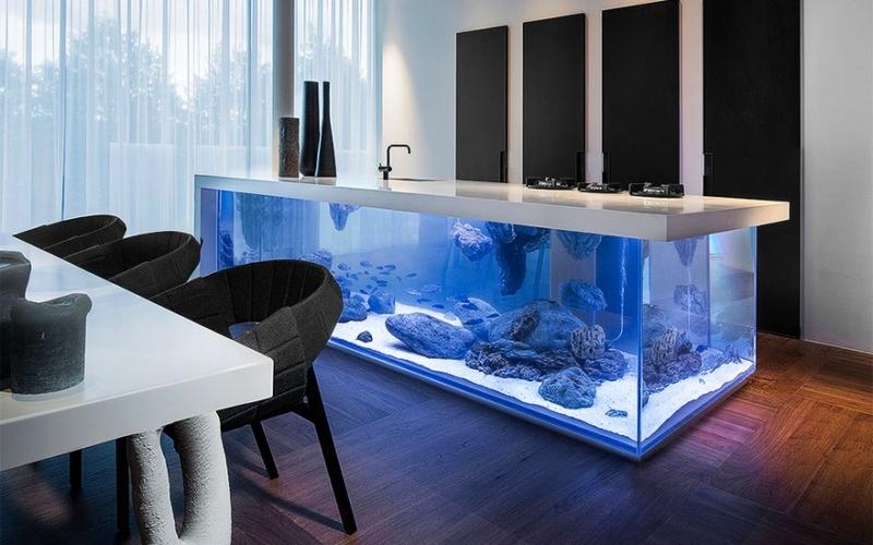 best aquarium ideas to freshen up your home interior