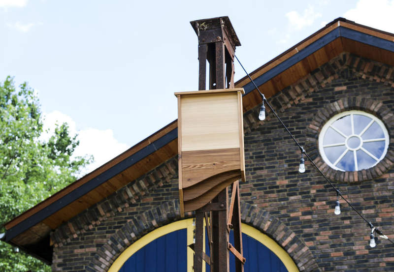 BatBnB is wooden birdhouse specifically designed for bats