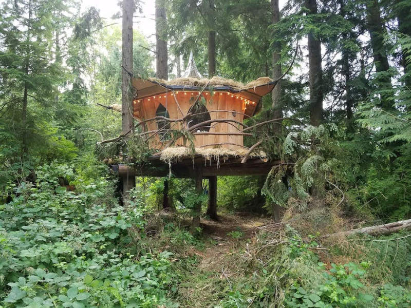 Mountain Views B&B Retreat in Monroe offers pot-friendly treehouses