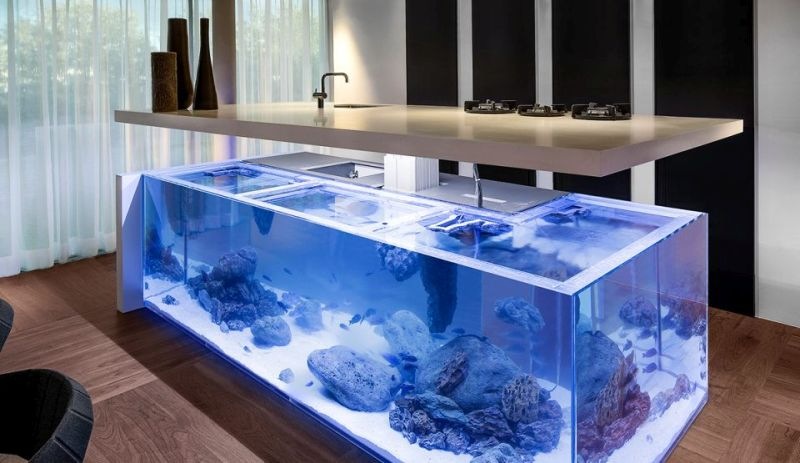 Aquarium Bed Part - 41: This Aquarium Bed Is For You. The Massive 650-gallon Aquarium Bed Is  Custom-made To Offer A Mesmerizing View Of Aquatic Life While You Sleep.