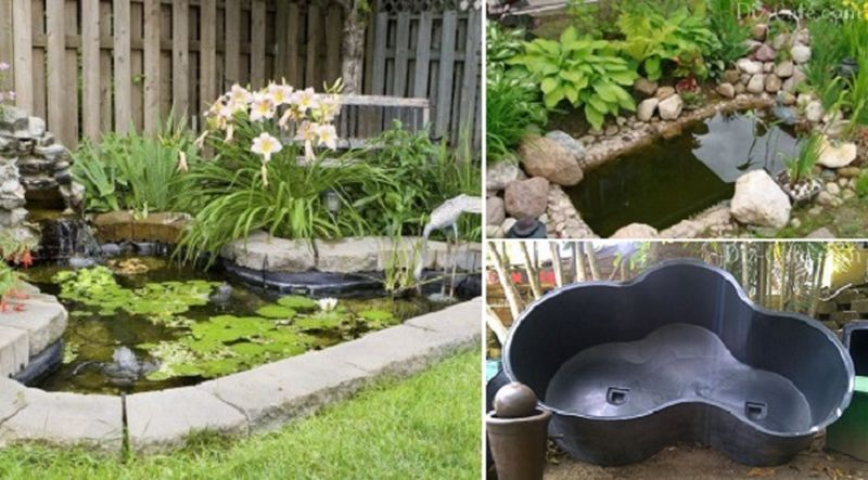Old bathtub into garden pond