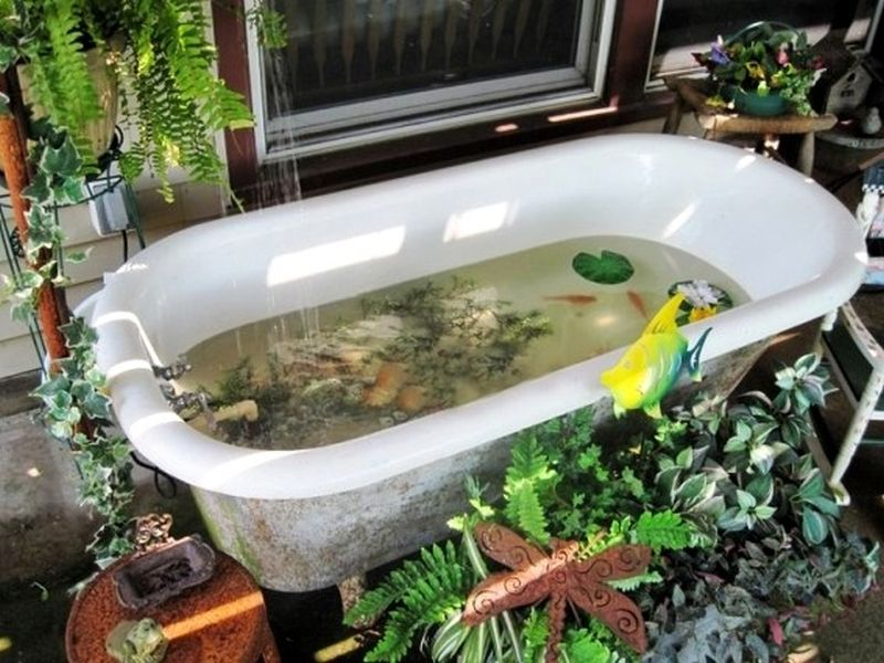 Old bathtub into fish pond