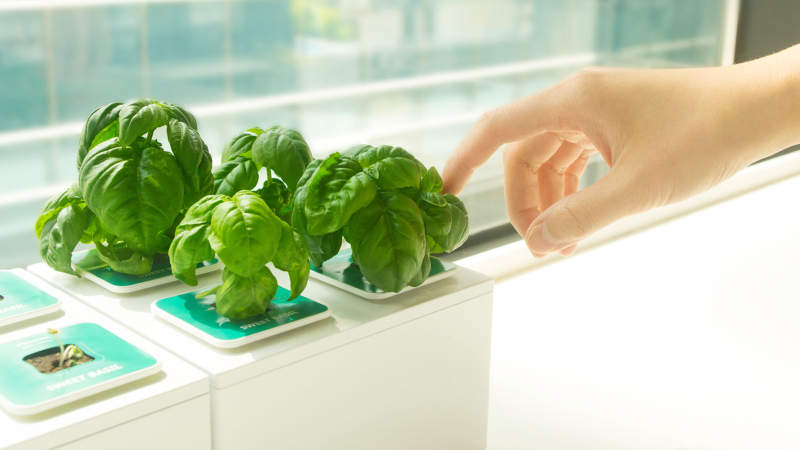 Planty Square by Nthing is modular hydroponic gardening kit